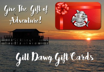 purchase-gill-dawg-gift-cards